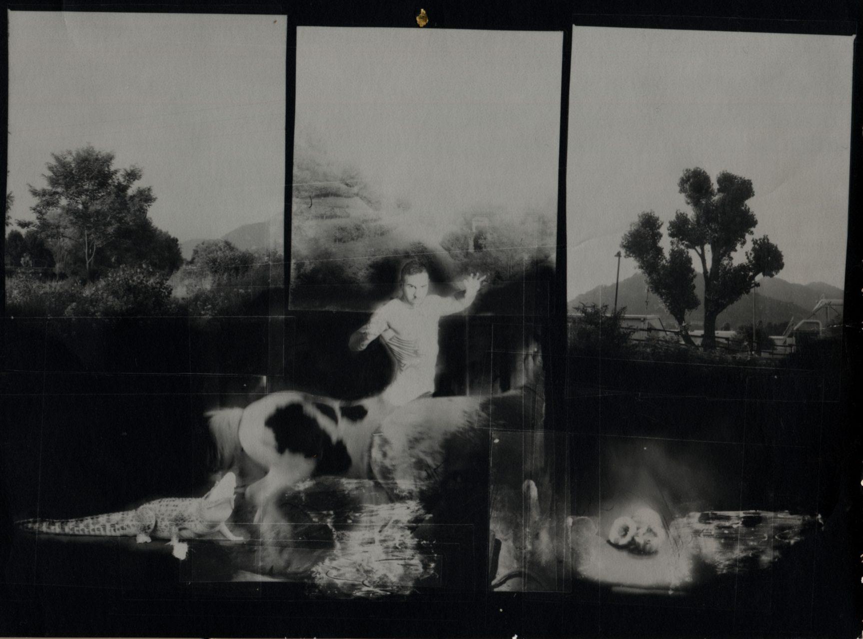 2012-Ritratto come Centauro